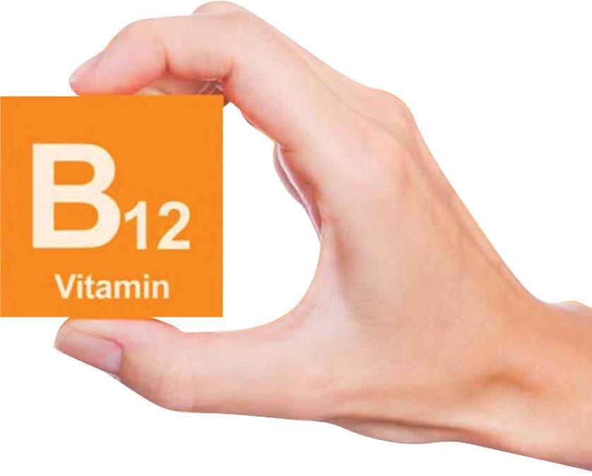 با منابع ویتامین B12 آشنا شوید