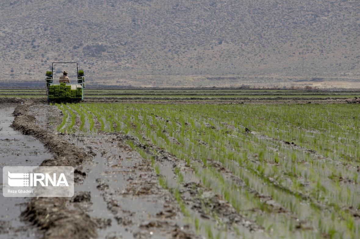 خبرنگاران پرداخت 102 میلیارد تومان به کشاورزان خسارت دیده از سیل در لرستان