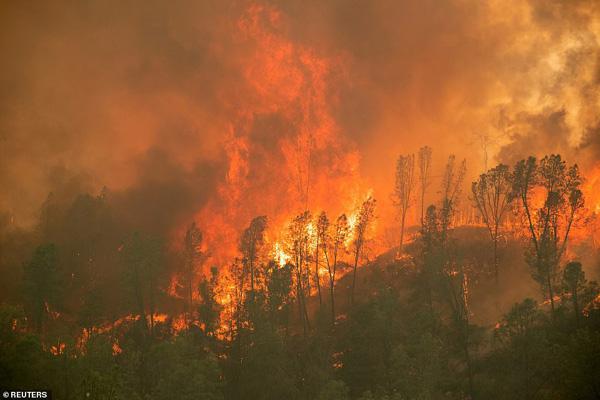 کالیفرنیا همچنان می سوزد (تصاویر)