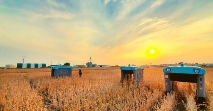 پروژه مینرال آلفابت کشاورزی را با ربات ها و هوش مصنوعی دگرگون می کند