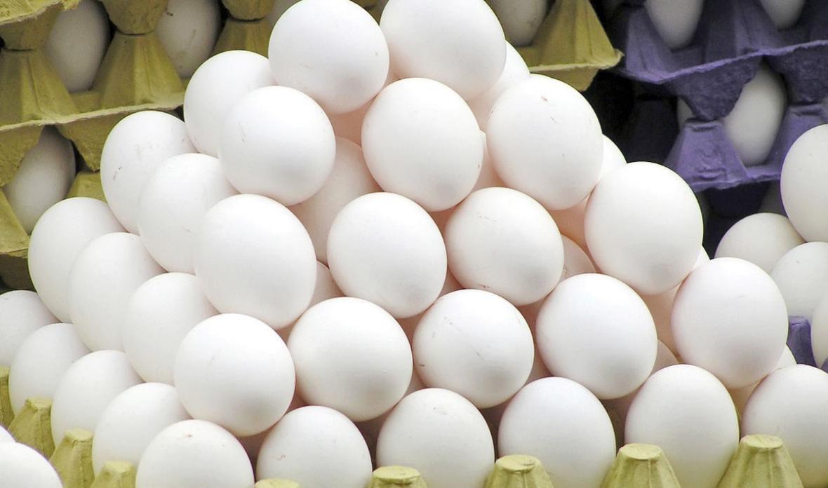 ترکاشوند: 60 هزار تن تخم مرغ در نیمه اول امسال صادر شد